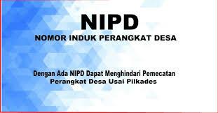 Kemendagri Siapkan Aturan NIPD Bagi Perangkat Desa